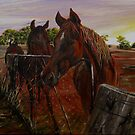 Australian quarterhorse by Kerry Wembridge Ziernicki