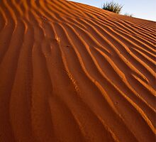 The Sands Of Time  by Melissa Seaback