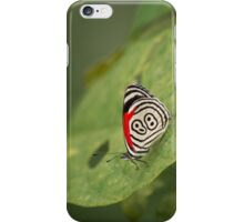 Butterfly with nice wing design iPhone Case/Skin