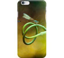 Blue Hunter's Rest iPhone Case/Skin