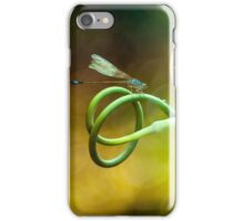 Blue Hunter's Rest iPhone Case/Skin