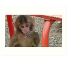 See No Evil Monkey Art Print