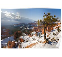 Bryce Canyon snowscape Poster