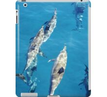 Special Spinner Dolphin iPad Case/Skin