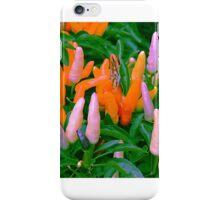 Prescott Park iPhone Case/Skin