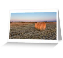 A lone hay bale Greeting Card