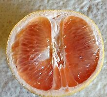 grapefruity by ruby rose trabka