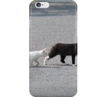 Cat and her white kitten cross the road iPhone Case/Skin