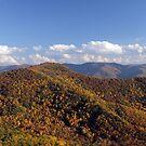 Fall by ericb
