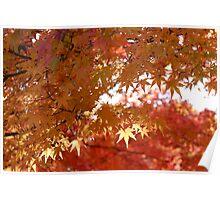 Koku Koen Autumn #1 Poster