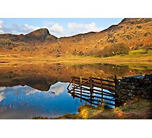 The Fence - Blea Tarn Photographic Print
