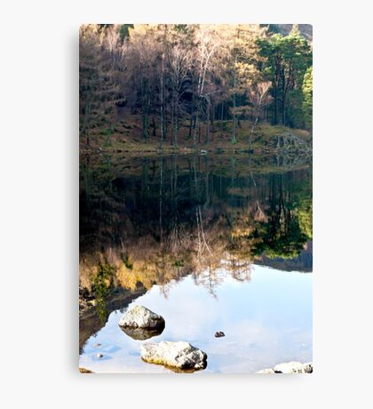 Reflections at Blea Tarn Canvas Print