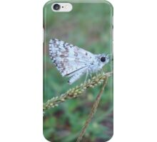 Spring Azure butterfly with an ant iPhone Case/Skin