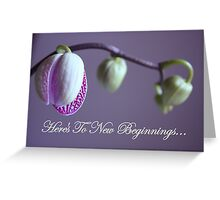 Here's To New Beginnings Greeting Card