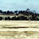 On the Brookton Highway by LouJay