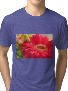 Red Gerbera, As Is Tri-blend T-Shirt