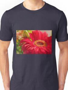 Red Gerbera, As Is Unisex T-Shirt