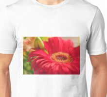 Red Gerbera, As Is Unisex T-Shirt