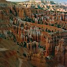 Bryce Canyon- America by apple88