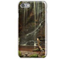 Scenic Owl iPhone Case/Skin