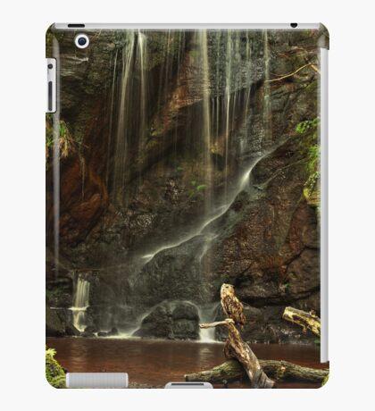 Scenic Owl iPad Case/Skin