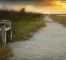 peaceful place, Pea Island NWR by Jacque Gates