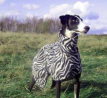 My zebra girl by homesick