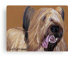 Briard Vignette Canvas Print