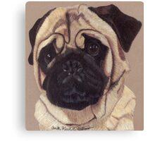Pug Vignette Canvas Print