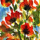 Tuscan Poppies by Josie Duff