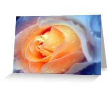 Raindrops On Roses Greeting Card