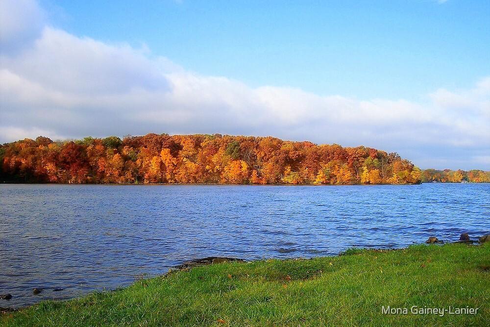 Lake Decatur, Decatur IL by Mona Gainey-Lanier