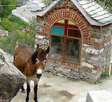 Mount Athos - donkey and chapelle by SvobodaT