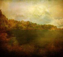 Autumn On The Trinity by DottieDees