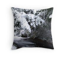 Walk By A Woodland Stream Throw Pillow