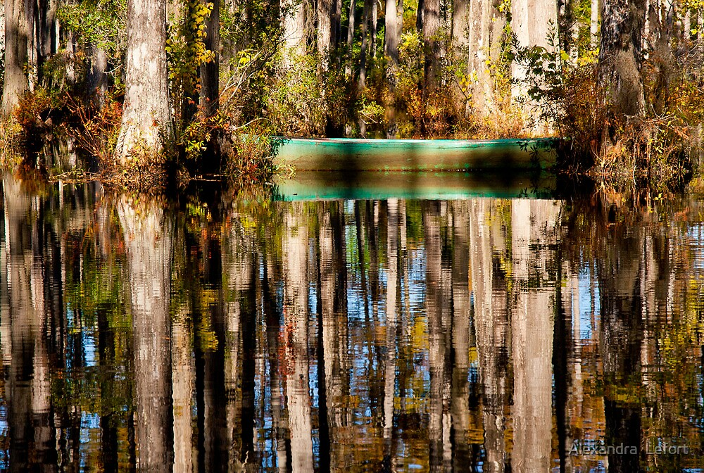 Reflections in Cypress Garden by axalle