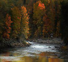 Canadian Landscape by Igor Zenin