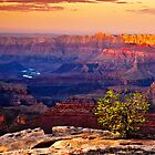 Evening Colors over the Grand Canyon by axalle