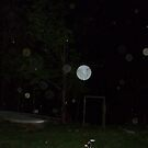 Odessa's Orbs At Night by PaulCoover