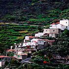 Hill Village - Tenerife by evilcat