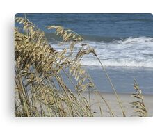 Sea Grass Canvas Print