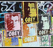 Obey by Nathan  Holmes
