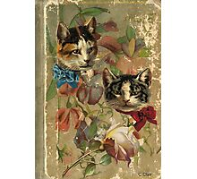 Victorian Cats Floral Rose Antique Book Photographic Print