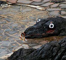 Stone Snake - Tenerife by evilcat