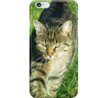 Decided cat heading towards you iPhone Case/Skin