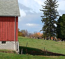The Perfect Country Scene by vigor