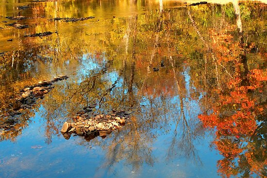 Autumn Ripples by NatureGreeting Cards ©ccwri