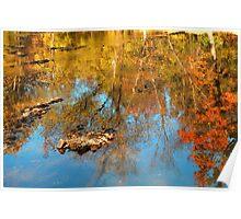 Autumn Ripples Poster