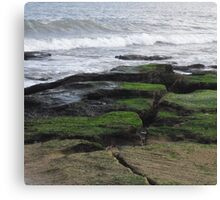 A Split in the Earth Canvas Print