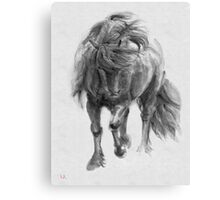 Black Horse sumi-e original watercolor painting Canvas Print
